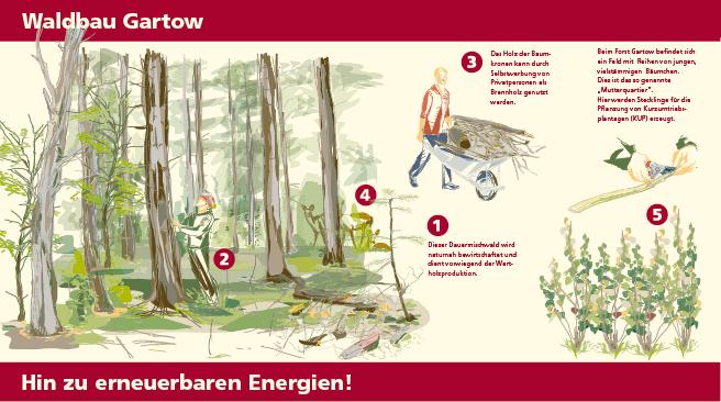 Bioenergietafel Gartow Illustration, Infografik Waldbau